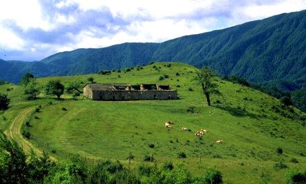 A contatto con la natura: il turismo nei parchi piace